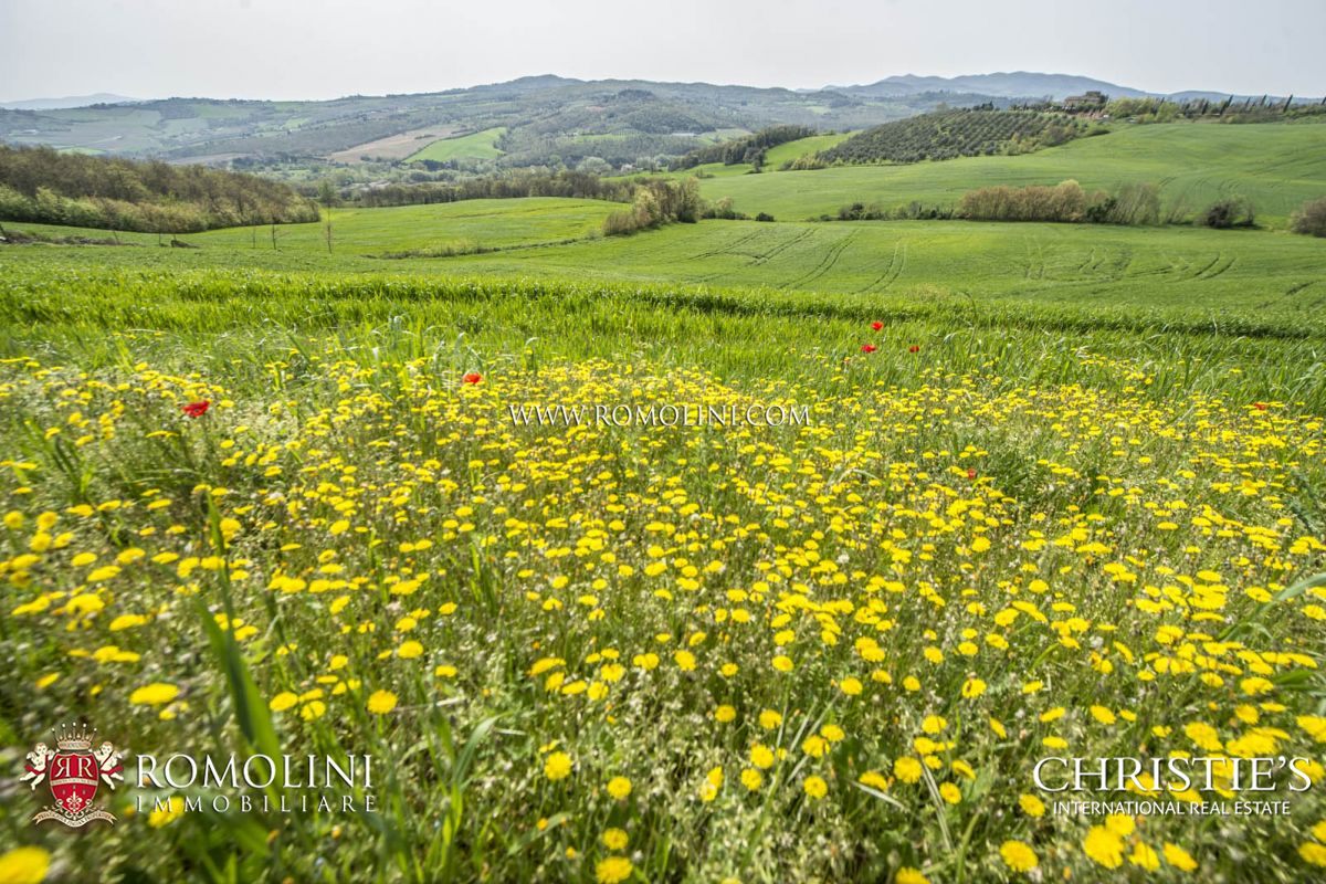 FARMHOUSES FOR SALE IN TODI , UMBRIA