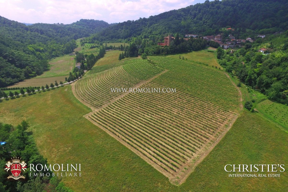 CASTLE FOR SALE PIEDMONT WINE CELLAR, VINEYARDS BARBERA GRIGNOLINO