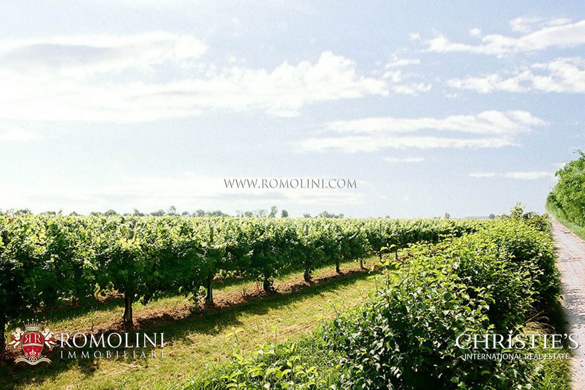 VENETO WINE ESTATE 93 hectares of vineyards, Prosecco, sparkling wine, white and red wines