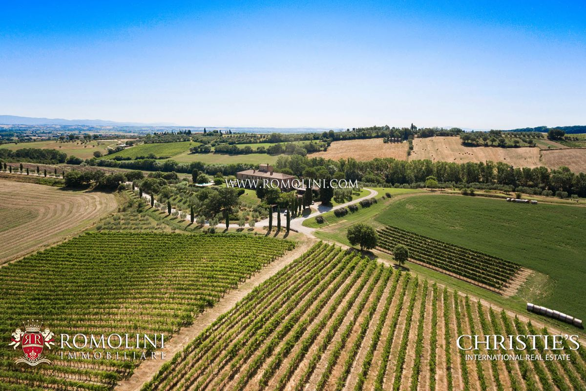 COUNTRY HOUSE WITH VINEYARD FOR SALE ON THE SIENESE HILLS, TUSCANY, SIENA, SWIMMING POOL, CHIANTI, CHIANTI COLLI SENESI