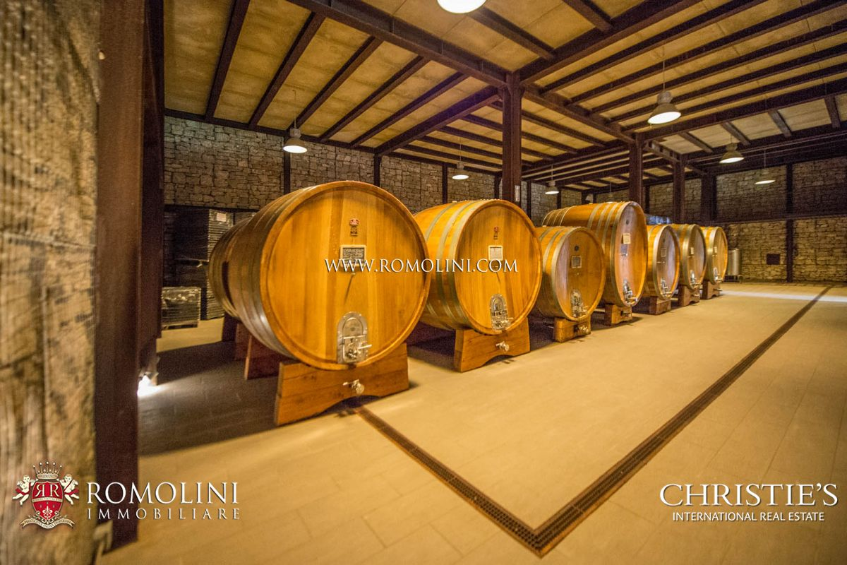 STATE OF THE ART WINERY AND VINEYARDS FOR SALE IN ITALY, MULTI-AWARDED SAGRANTINO WINE