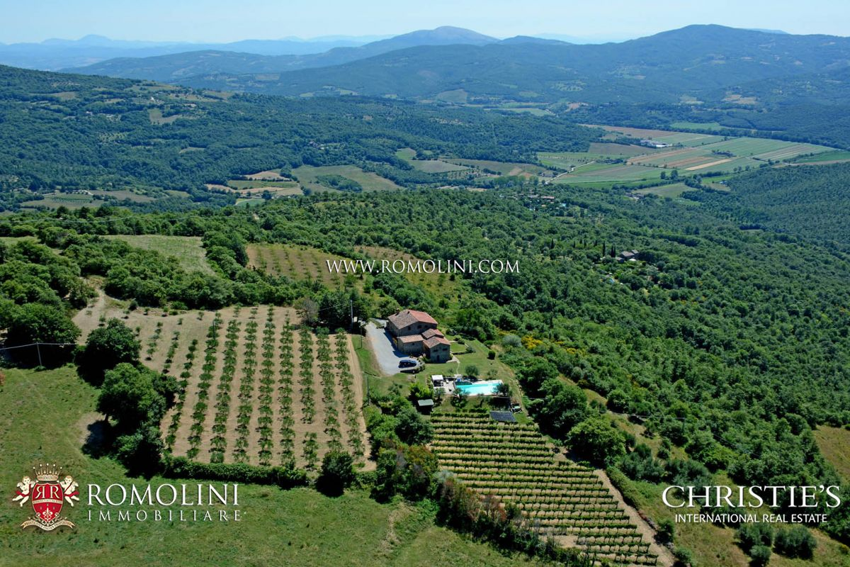 PROPERTY FOR SALE UMBRIA, PANORAMIC VIEW, SMALL VINEYARD, WINERY