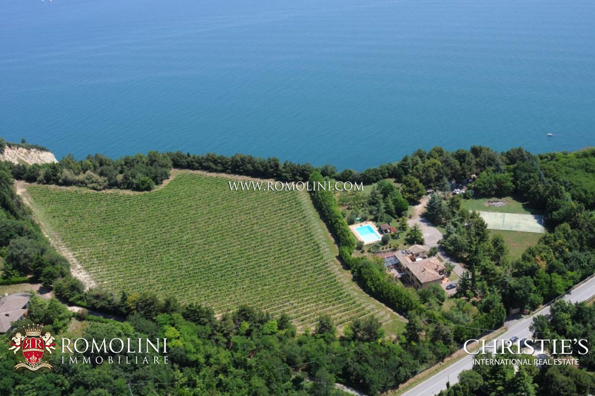 Estate with vineyard for sale Ancona Marche