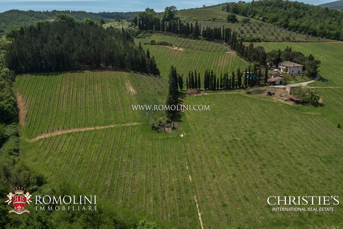 SAN GIMIGNANO: FARM ESTATE WITH MANOR VILLA, VINEYARDS, CELLAR
