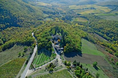 CHIANTI CLASSICO WINERY: Wine Estate in Tuscany, Chianti Classico vineyard for sale in Greve in Chianti