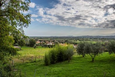 BUILDING PLOT FOR SALE: Properties To Renovate in Italy, Rimini - Romolini.com-Christie's