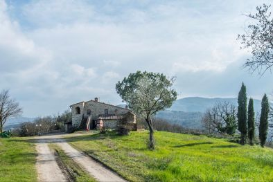 →   TUSCAN ESTATE: COUNTRY HOUSE, VINEYARD FOR SALE, VALDELSA, DOC Terre di Casole Wine