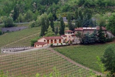 ☞  PIEDMONT WINERY AND VINEYARDS FOR INVESTMENT: Barbera, Dolcetto Ovada. Biodynamic Wine Production