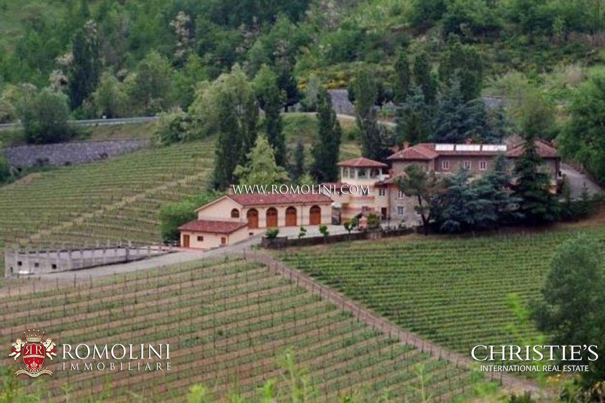 PIEDMONT WINERY AND VINEYARDS FOR INVESTMENT: Barbera, Dolcetto Ovada. Biodynamic Wine Production