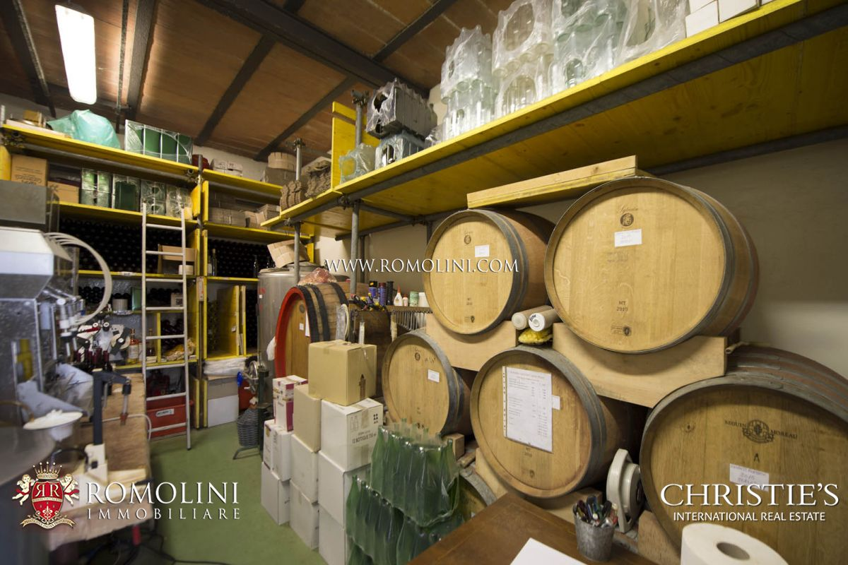 CHIANTI CLASSICO DOCG WINERY FOR SALE, VINEYARDS, TUSCAN WINES