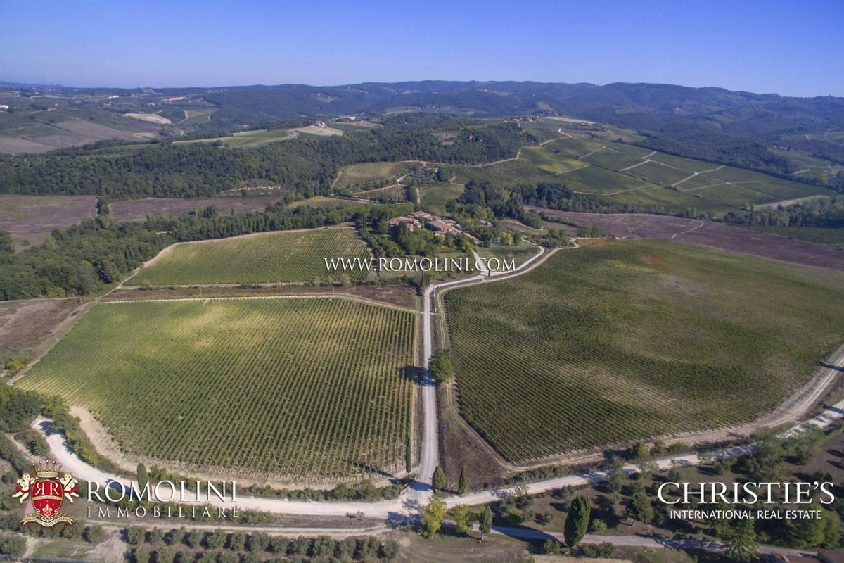 WINE ESTATE CHIANTI CLASSICO 45 HECTARES VINEYARDS, TUSCANY