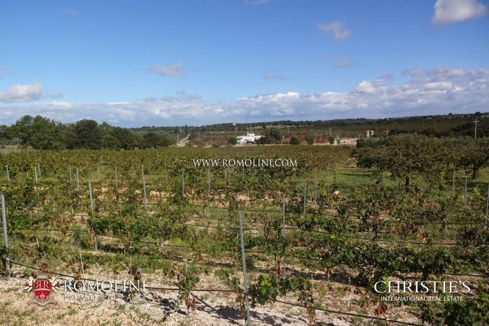 FARM WITH AGRITURISMO AND 30 HA OF LAND SALE BARI, APULIA