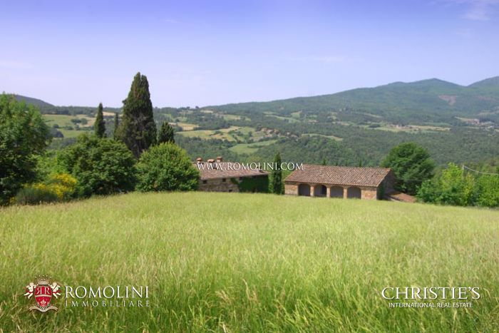 TUSCAN ESTATE FOR SALE PIEVE SANTO STEFANO
