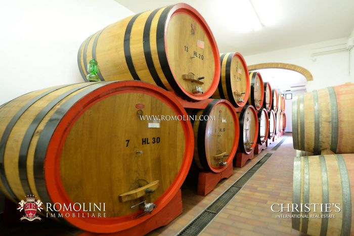Prestigious wine estate for sale on the hills of Montalcino, Siena