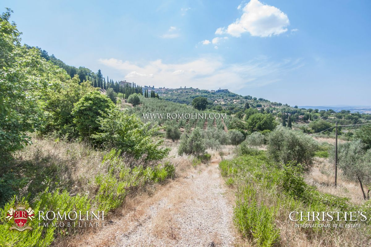 MONTALCINO: CELLAR TO BE RESTORED WITH 10 HA OF VINEYARD FOR SALE