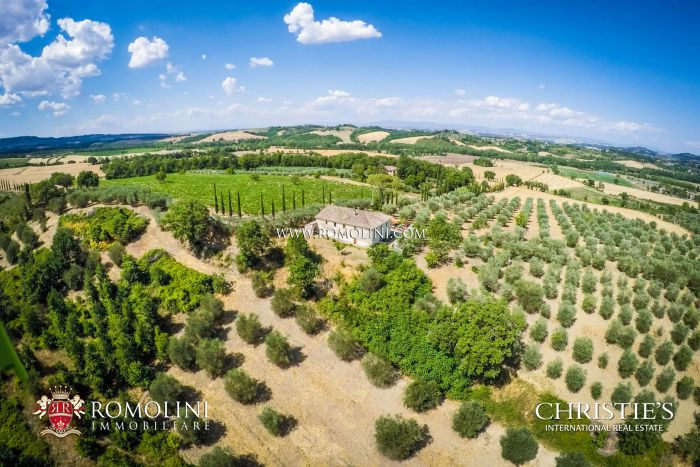 WINE RESORT FOR SALE IN TUSCANY, SIENA