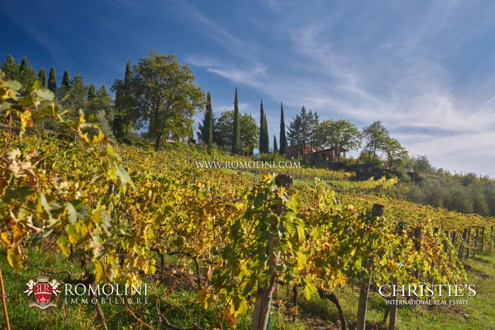 CHIANTI CLASSICO WINE RESORT FOR SALE, GAIOLE IN CHIANTI, INVESTMENT