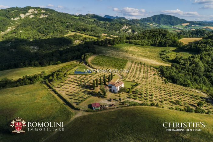 EMILIA-ROMAGNA: FARMHOUSE WITH 48 HA OF LAND AND VINEYARD FOR SALE