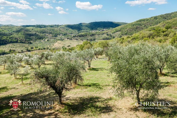 FINELY RESTORED FARMHOUSE FOR SALE IN VALDARNO, TUSCANY