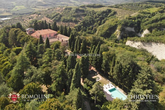 WONDERFUL ORGANIC ESTATE WITH VINEYARD FOR SALE IN RAVENNA
