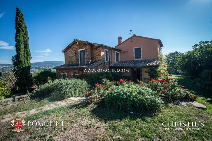 WINE ESTATE (5.6 HA VINEYARD) FOR SALE ONE HOUR FROM ROME