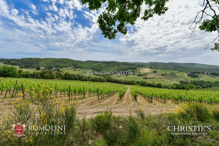 WINE ESTATE FOR SALE CHIANTI CLASSICO, TUSCANY