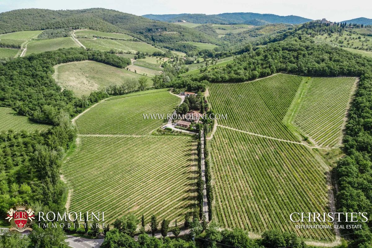 ORGANIC WINERY, VINEYARDS FOR SALE CHIANTI CLASSICO TUSCANY
