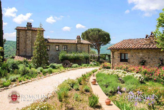 ORGANIC WINE AND OIL ESTATE FOR SALE TUSCANY