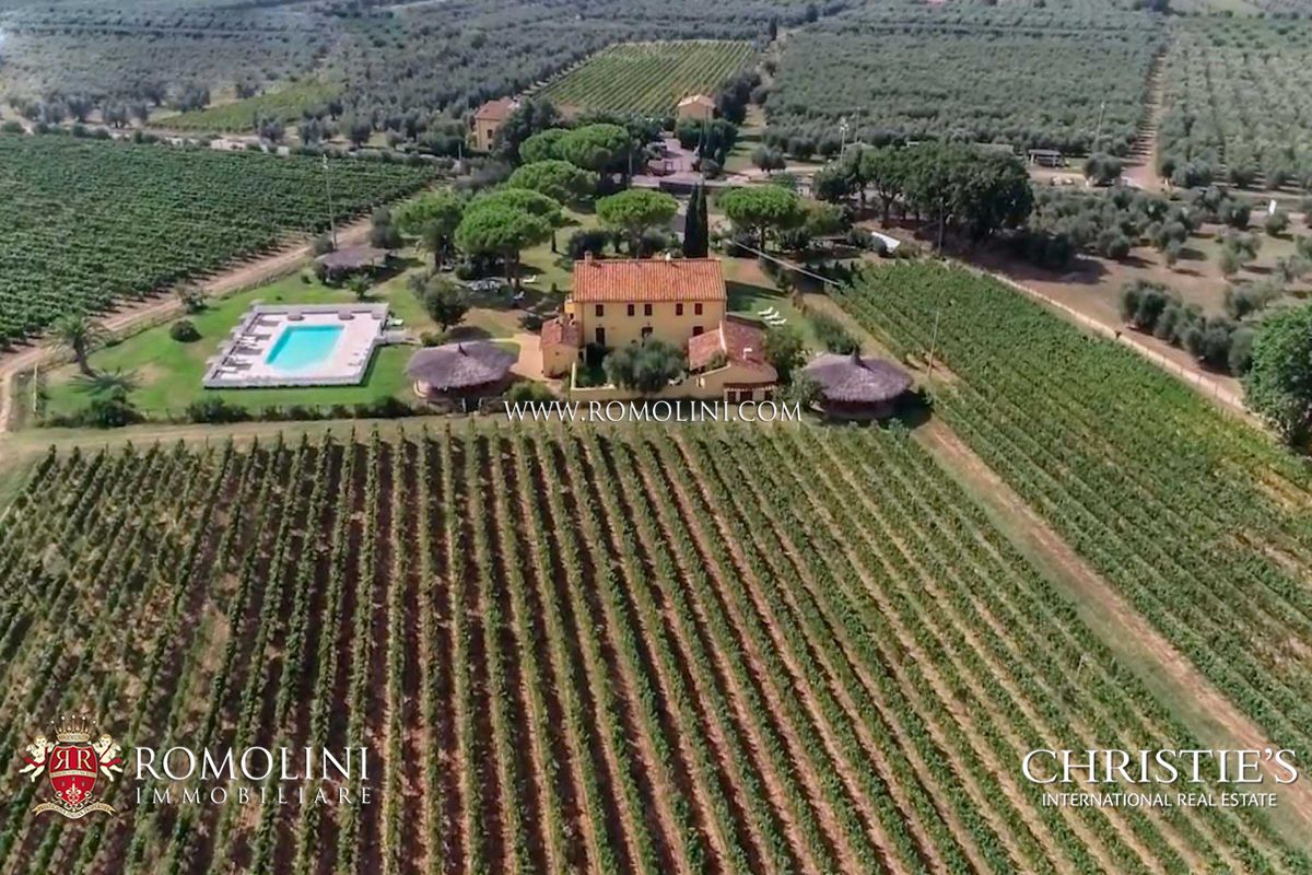 TUSCAN VINEYARDS FOR SALE IN DOC BOLGHERI AREA
