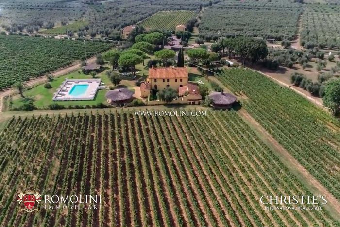 TUSCANY VINEYARDS FOR SALE IN DOC BOLGHERI AREA