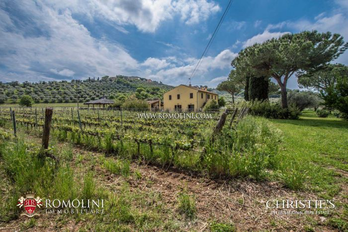 TUSCANY WINERY FOR SALE IN DOC BOLGHERI AREA