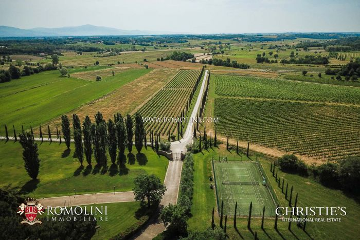 WINE ESTATE FOR SALE IN AREZZO, TUSCANY
