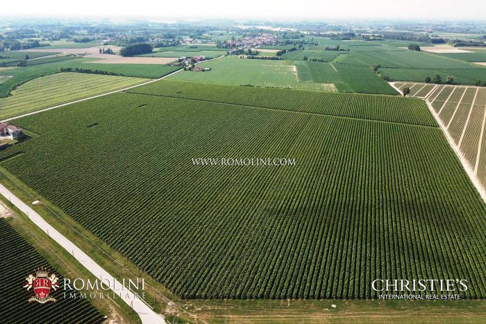 108-HA WINE ESTATE, PROSECCO VINEYARDS FOR SALE