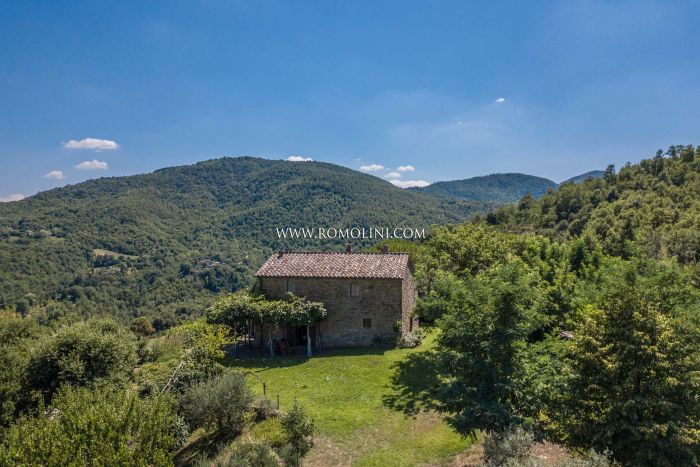 RUSTIC COUNTRY HOUSE WITH POOL FOR SALE IN ANGHIARI