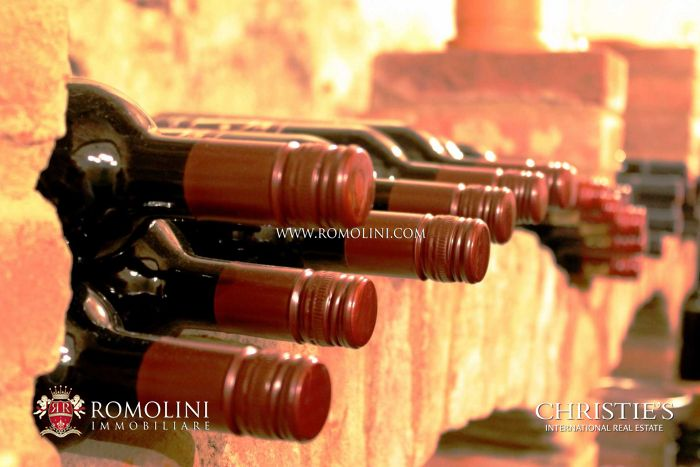 WINE ESTATE FOR SALE IN MONTALCINO, 7 HA OF BRUNELLO VINEYARDS