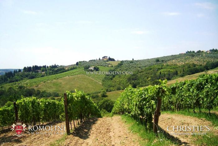 WINE ESTATE, VILLA FOR SALE NEAR FLORENCE, TUSCANY