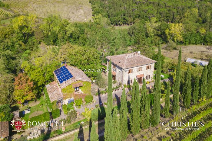 BOUTIQUE ORGANIC WINE ESTATE FOR SALE, CHIANTI CLASSICO