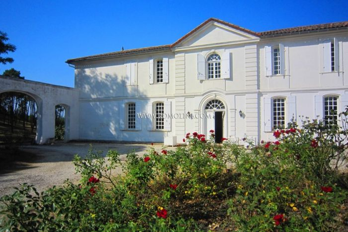 WINE ESTATE WITH CHATEAU FOR SALE IN FRANCE, SAINT EMILION