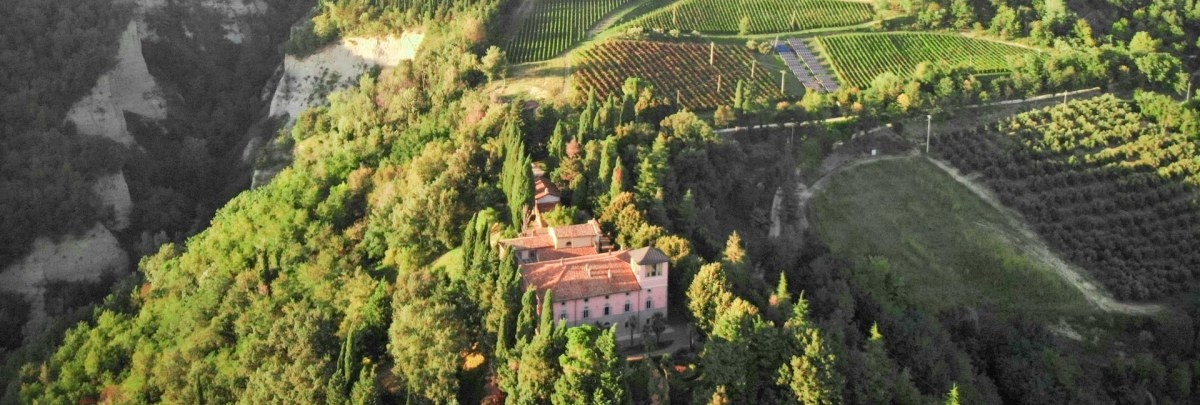 WONDERFUL ORGANIC ESTATE WITH VINEYARD FOR SALE IN ITALY