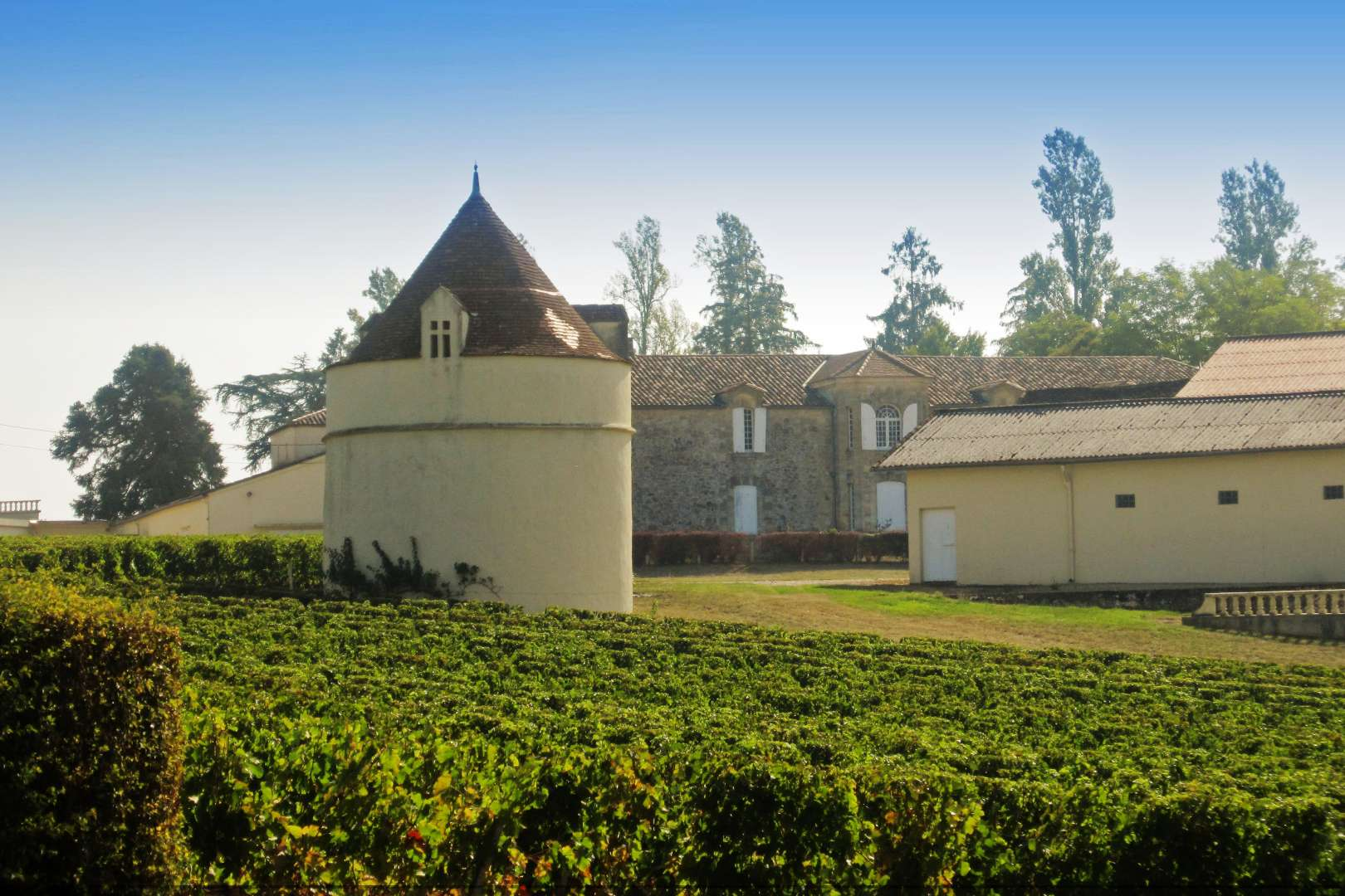 Vineyards & Winery in Bordeaux